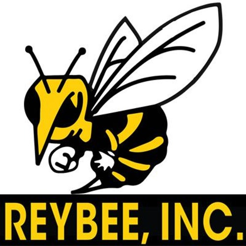 Reybee's avatar