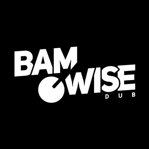 BAMWISE's avatar