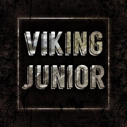 viking junior's avatar
