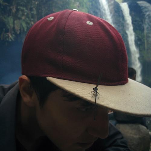 Daniel Bravo 37's avatar