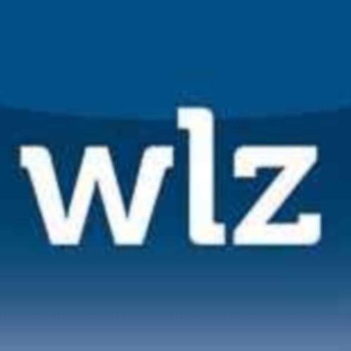 WLZ's avatar