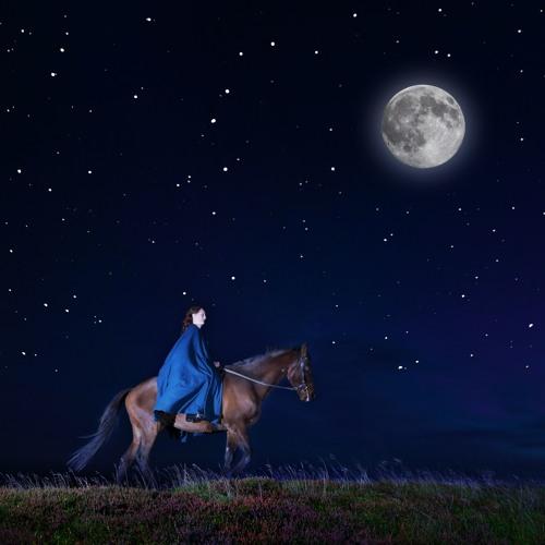 Follow The Moon's avatar
