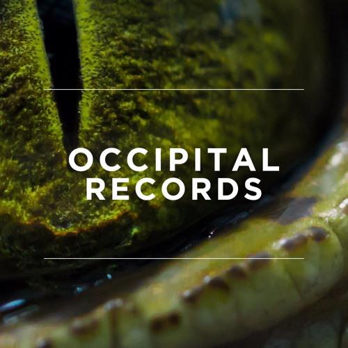 Occipital Records's avatar