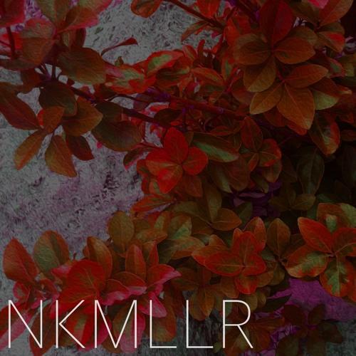 NKMLLR's avatar