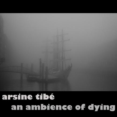 arsine tibé's avatar