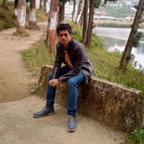 Prashant Thakuri's avatar