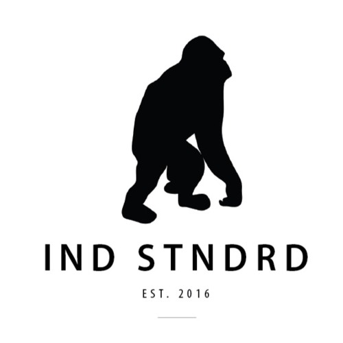 INDSTNDRD's avatar