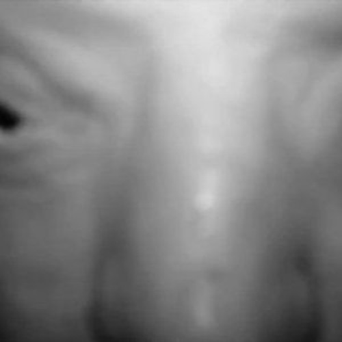 shawcross's avatar