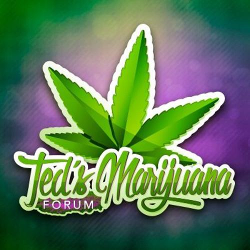 Ted's Marijuana Forum's avatar
