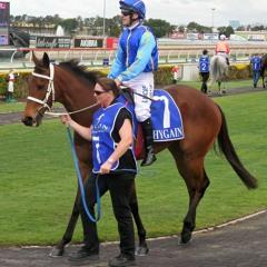 Aussie Equine Racing
