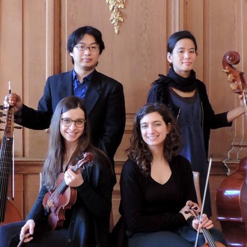 Concerto Ripiglino's avatar
