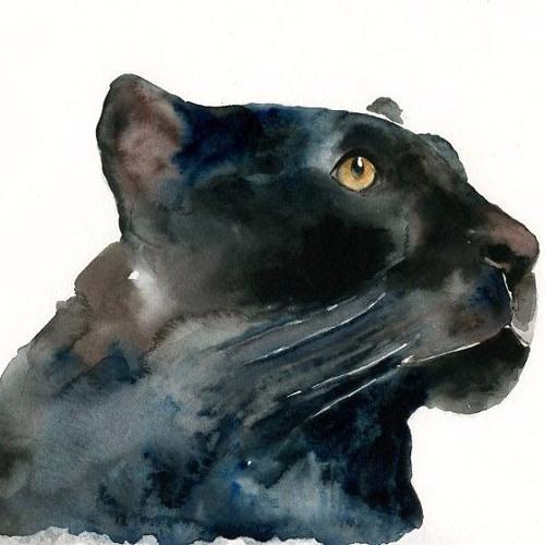 Panthurr's avatar