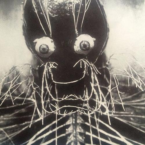 Psycho_calvin's avatar