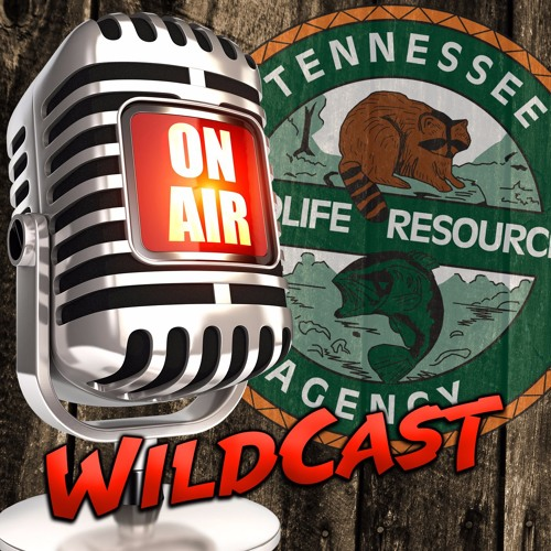 Tennessee WildCast's avatar