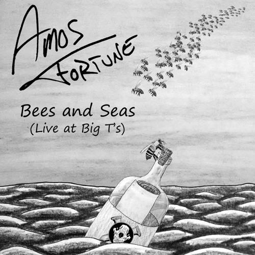 Amos Fortune's avatar