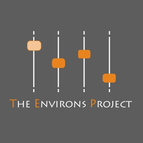 The Environs Project's avatar