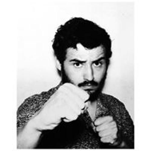 Clément Fvl's avatar
