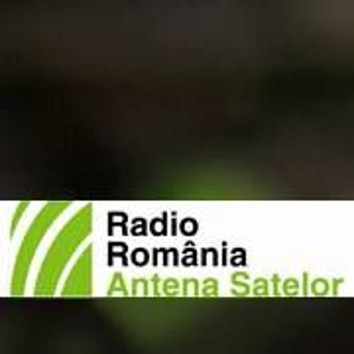 Radio Antena Satelor's avatar