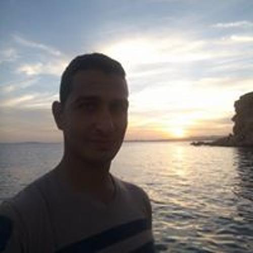 Mohamed Abd Elhamid's avatar