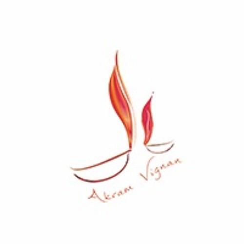 Akram Vignan Germany e.V.'s avatar