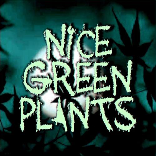 Nice Green Plants's avatar