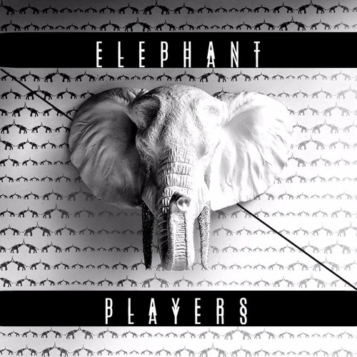 ELEPHANT RECORDS's avatar