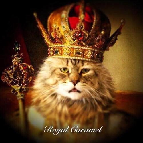 Royal Caramel's avatar