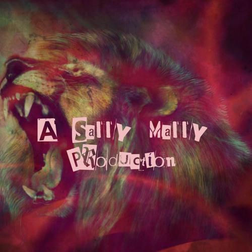 Sally Mally's avatar
