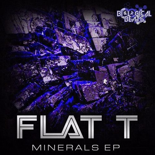 FLAT T's avatar