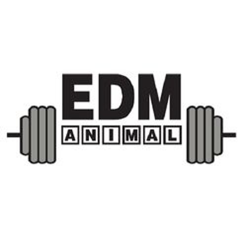 EDM ANIMAL's avatar