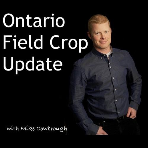 Ontario Field Crop Update's avatar