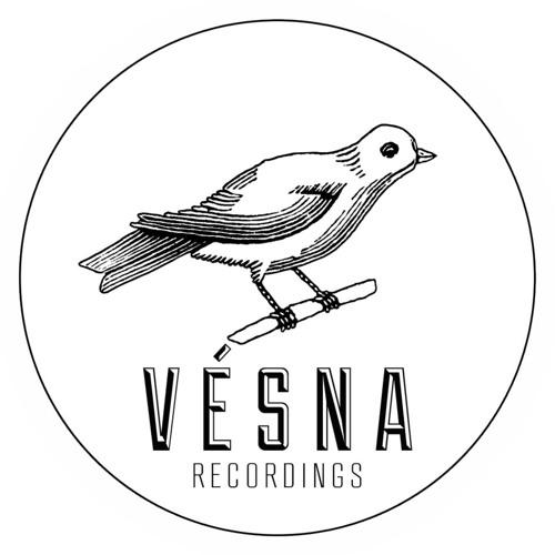 Vesna Recordings's avatar