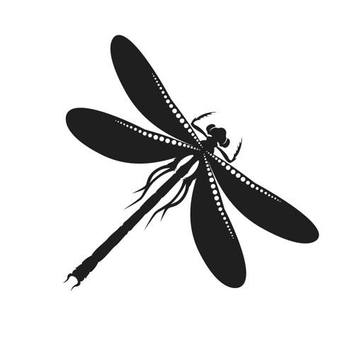 Libelle Kollektiv's avatar