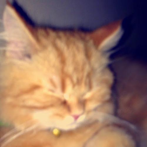 Heddy~'s avatar