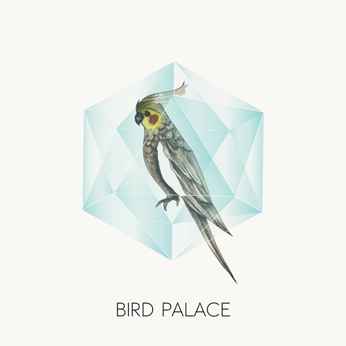 Bird Palace's avatar