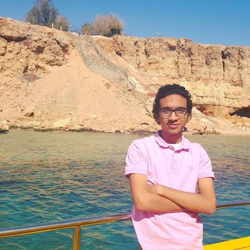 Abdelrahman Shamekh's avatar