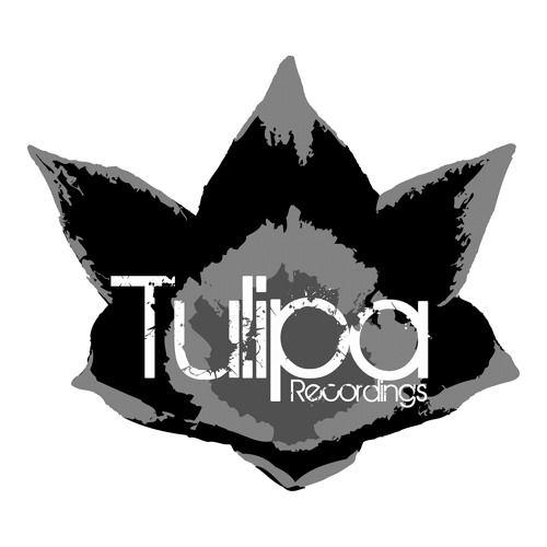 Tulipa Recordings's avatar