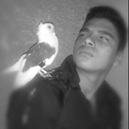 Sok Rat's avatar