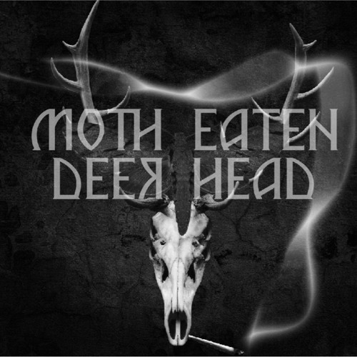 MOTH-EATEN DEER HEAD's avatar