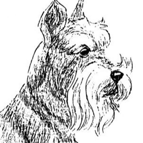 Ted Tyro's avatar
