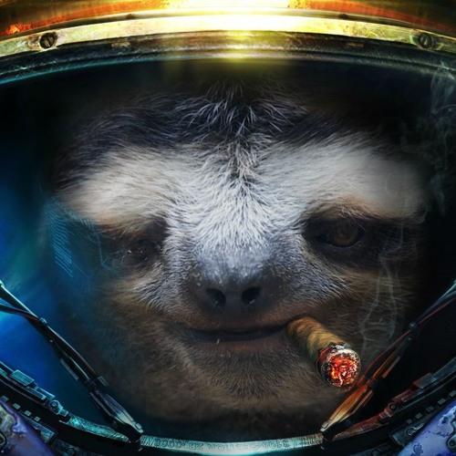 Das Sloth's avatar