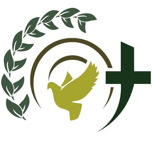 Mount Olive's avatar