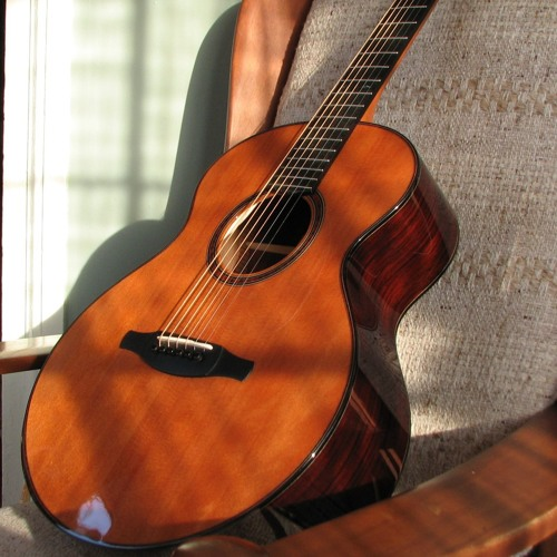 island guitar's avatar