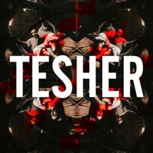 Tesher (Check my reposts for new music!)'s avatar