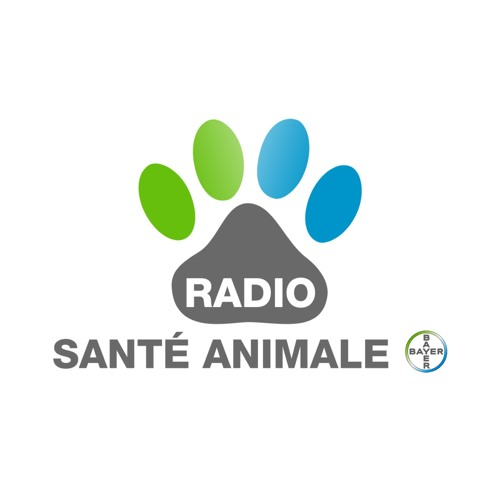 Radio Santé Animale's avatar