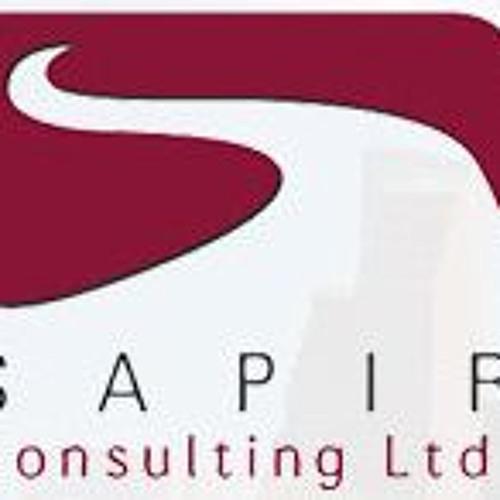Sapir Cs's avatar