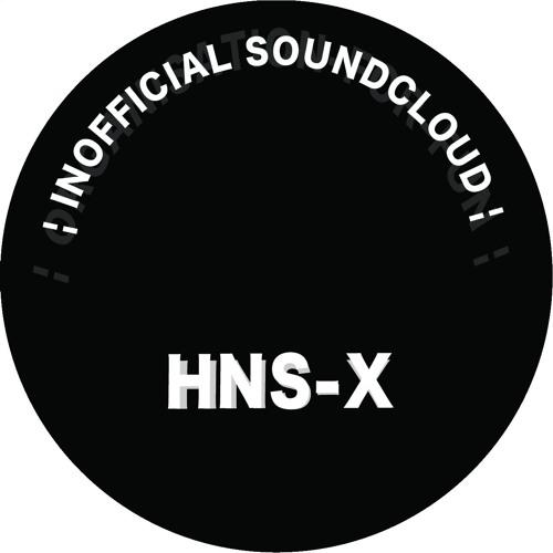 HNS-X's avatar