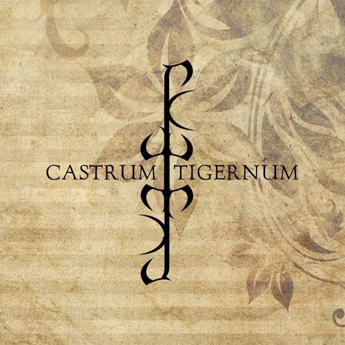 Castrum Tigernum's avatar