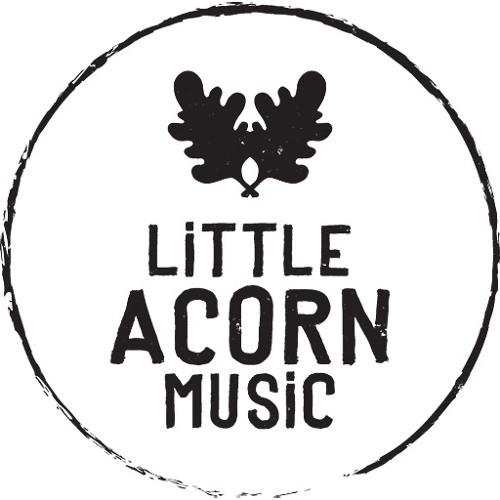 Little Acorn Music's avatar