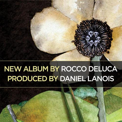 Rocco DeLuca's avatar